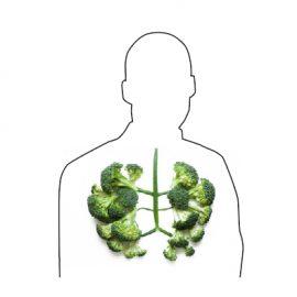 Des cellules gustatives dans le nez ? dans les poumons ?!